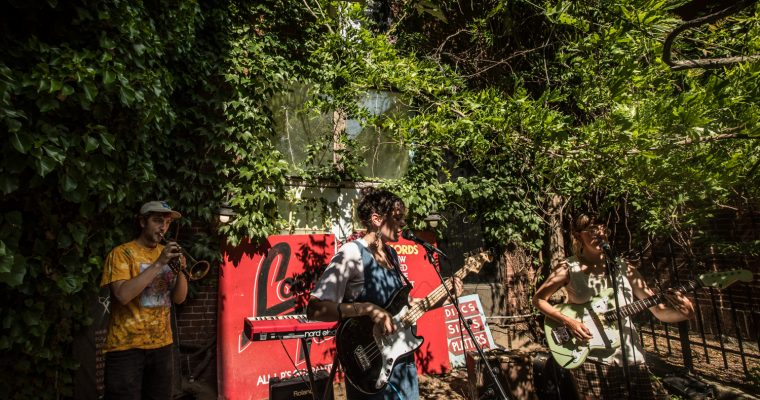 Houndsteeth, Lady Pills and Carol played Looney Tunes – 6/13